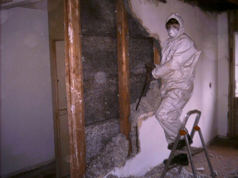 hendler abbruch asbestsanierung. Black Bedroom Furniture Sets. Home Design Ideas